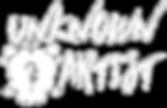 Copy of Logo_White transparent.png