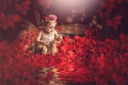 Fairy, Ruby Woods