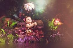 Baby portrait fairy