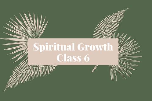 Spiritual Growth Class 6 - The Sixth Ray