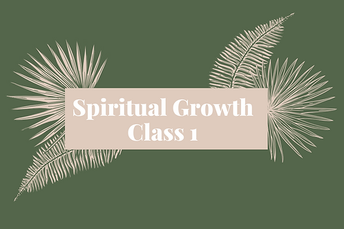 Spiritual Growth Class 1 - The First Ray