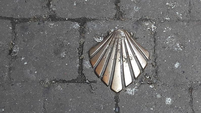 Compostella-schelp.jpg