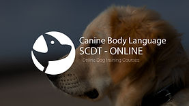 canine body language new sales.jpg