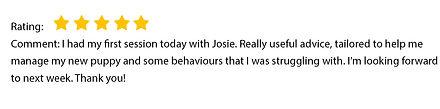 Josie review 1.jpg