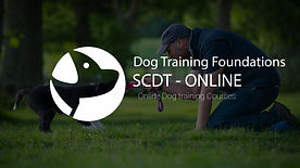 Dog Training foundations.jpg