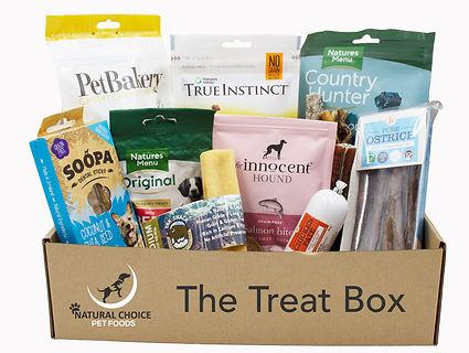 The Treat Box no flap.jpg