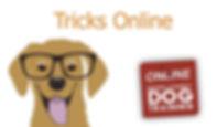Tricks online.jpg