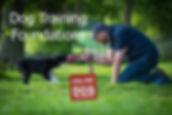 dog training foundations.jpg