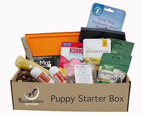 Puppy Starter Box