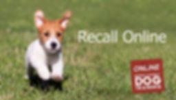 Recall online.jpg