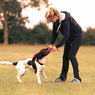 Josie - Dog Behaviour 121s