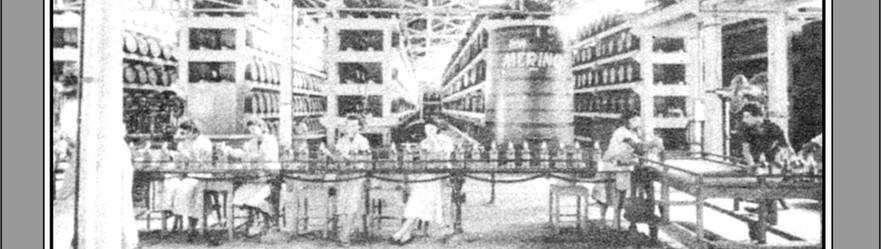 FOTO 14 - Trabalhadoras em linha de montagem na fábrica Ron Merino