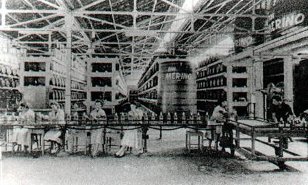 Trabalhadoras em linha de montagem na fábrica Ron Merino