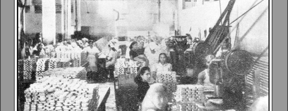 FOTO 12 - Trabalhadores da Companhia Brasileira de Produtos de Pesca