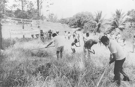 """""""Mutirão comunitário"""" na Fazenda Colubandê"""