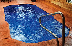Rejuvenator Swim Spa