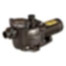 Hayward Maxflo II Pump