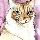 fantillus-pet-portrait-cat-1.png