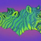 1342060882.fantillus_tigerzebra.jpg