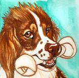 fantillus-pet-portrait-dog-1.png