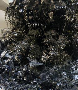 Black Beauty: A Living Totem