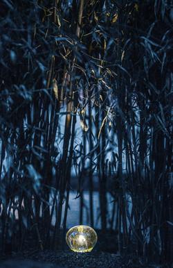 A Winter Landscape Cradling Bits of