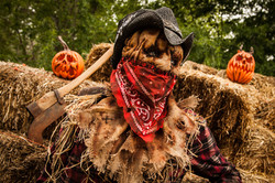 "Scarecrow mask ""outlaw"""
