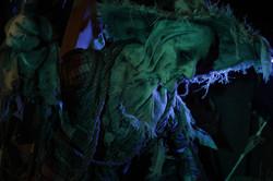 scarecrow 2013