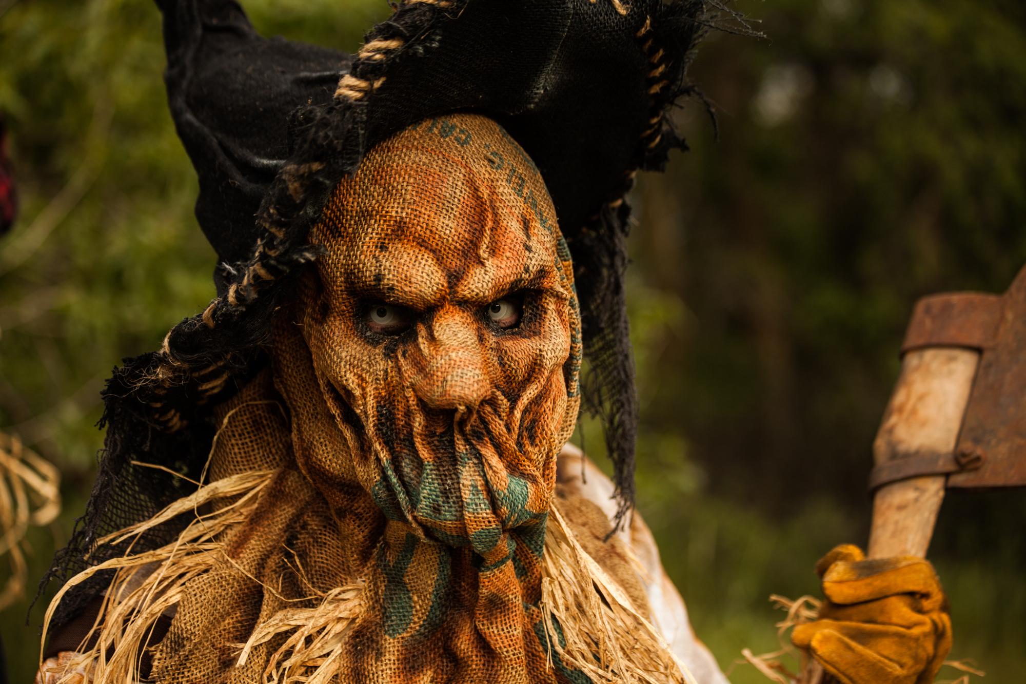 "Scarecrow mask ""Tariq"""