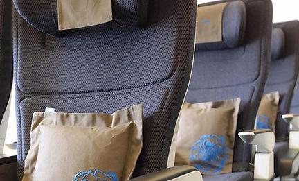 airlineseats.JPG