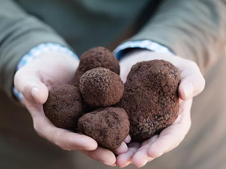 Episode 45: A Taste of Luxury - Australian Truffles