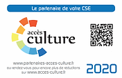 access culture.png