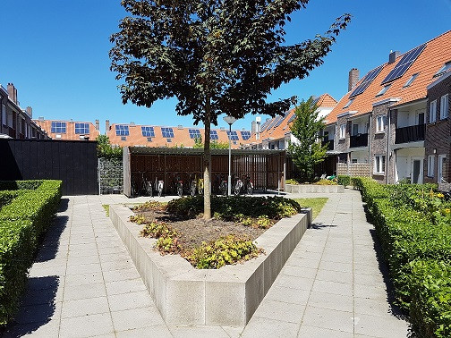 Student House Backyard