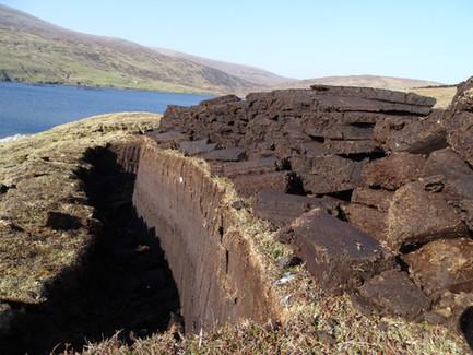 Casting Peat