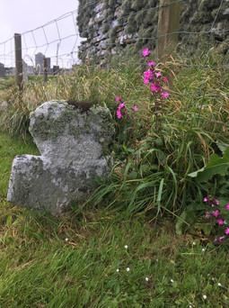 Pictish gravestone around 700/800 AD Not quite 1,500 years old.