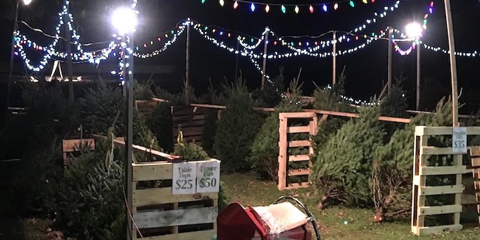 372 Holiday Tree Sales Starts!