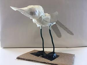bird.webp