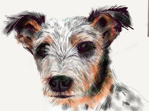 Mercerceramics_dogs.png