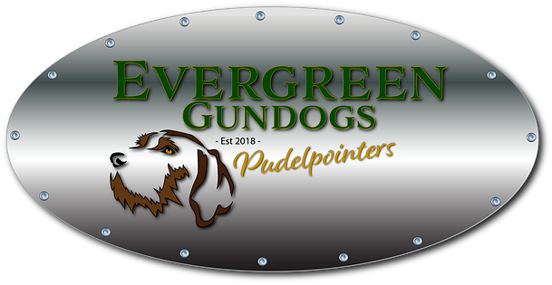 Evergreen metal plate logo.png