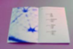 avr360_book_webbbb3.jpg