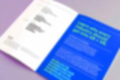 avr360_guidelines_webbbb.jpg