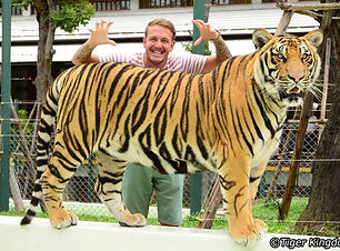 tiger-kingdom-phuket.jpg