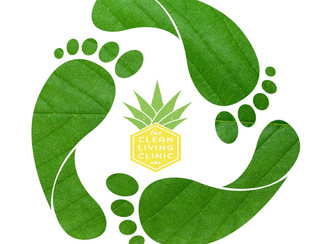 Our Enviromental Footprint!