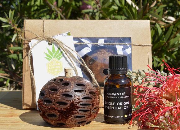 Australian Banksia Aroma Pod & Eucalyptus essential oil pack