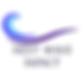 nextwaveimpact logo.png