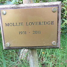 Mollie Loveridge.JPG