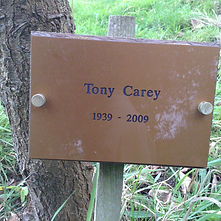 Tony Carey.JPG