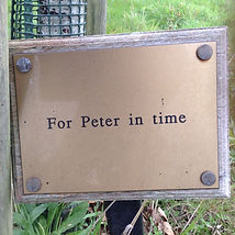 Peter W.JPG