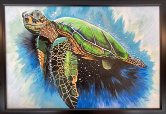 "Phillip M. Siegel - Close Encounter (Sea Turtle)"""