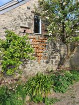 Ty Gwennol's Garden